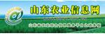 山东农业信息网