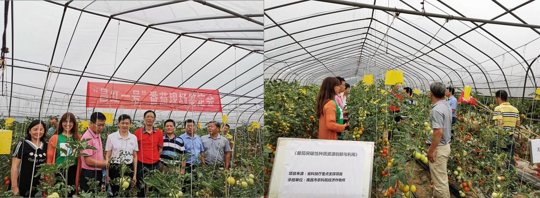 必威体育官方appbetway888555会组织专家赴南昌县
